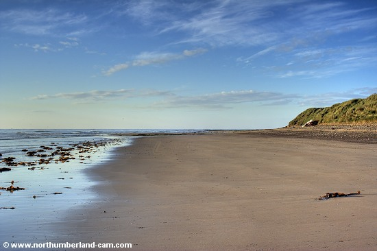 Early summer morning view of the beach at Amble Links, looking south near Hauxley.