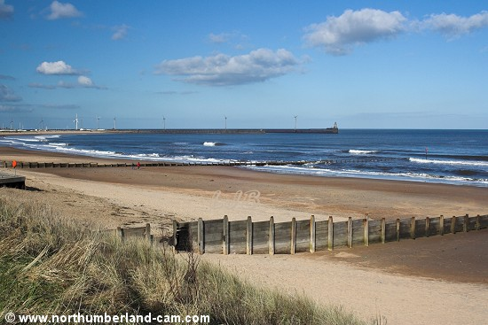 Blyth South Beach seen from the dunes on a sunny day in March.