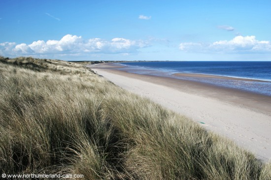 View north along the beach and dunes at Druridge Bay.