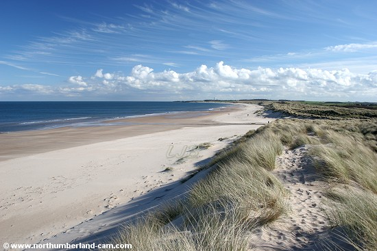 View south along the beach and dunes at Druridge Bay.