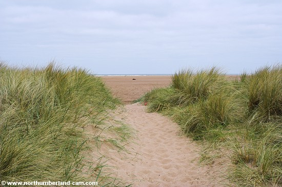 View through the dunes to the beach.