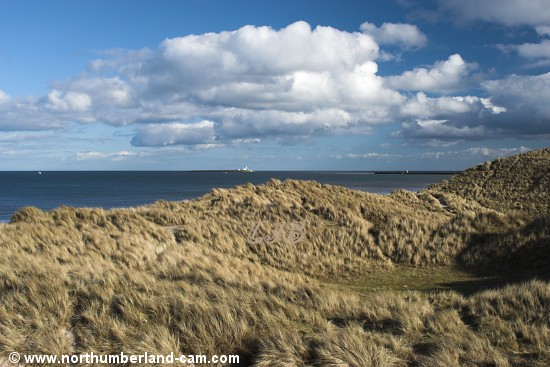 Views from the dunes above Warkworth Beach looking towards Amble Breakwater and Coquet Island.